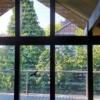 Vogelschutzstreifen Tape 500 an einem HUF Haus, Innenansicht