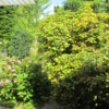 Vogelschutz - gemalte Streifen auf Fenster. 2 / Ansicht von innen nach außen