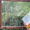 Vogelschutzstreifen Tape 400, 75mm breit, vertikal an Fenster