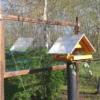 Vogelschutzstreifen 75mm breit auf Glas, Durchsicht am Vogelhaus, semaSORB PROBIRD DK500 Tape