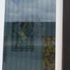 Vogelschutz - Fenster