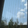 Vogelschutz - Fenster, Außenansicht