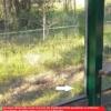 Vogelschutzfolie Xball schützt Vögel und Wartehalle vor Vandalismus