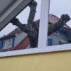 Schrägfenster mit 75mm breiten Tape 400 Streifen, Aussenansicht